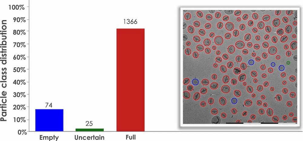 Graphical representation of packaging of liposomes