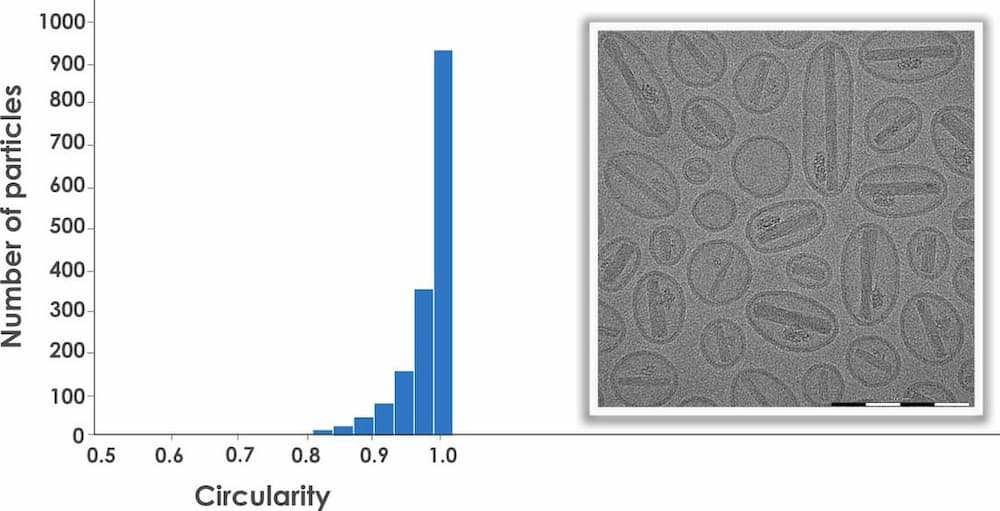 To the left a histogram showin circularity on the x-axis and number of particles on the y-axis. To the right an image of liposomes.