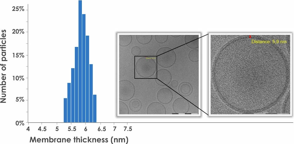 To the left, a histogram showing membrane thickness in nanometres and number of particles on the y-axis. To the right, images of liposomes.